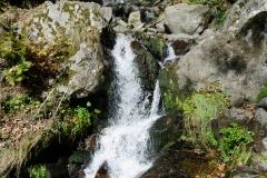 todtnauwasserfall-11