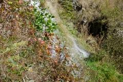 todtnauwasserfall-4